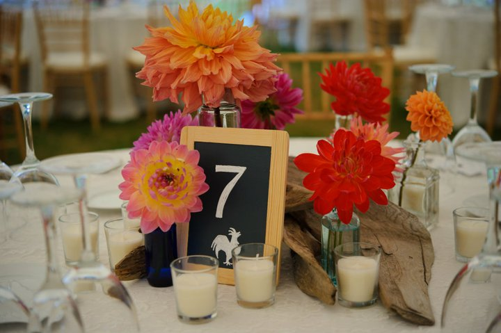 vintage bottles and dahlias